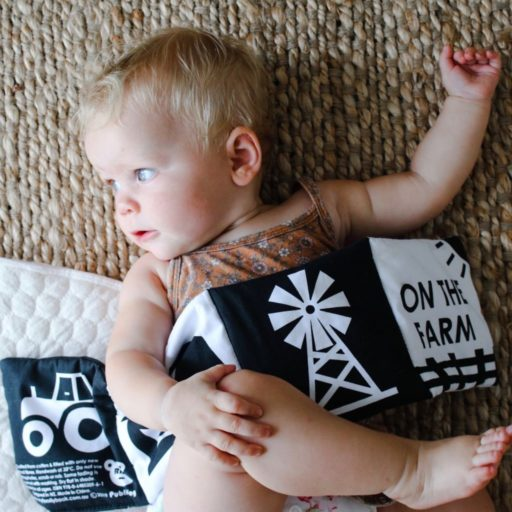On the Farm – Baby's first soft book